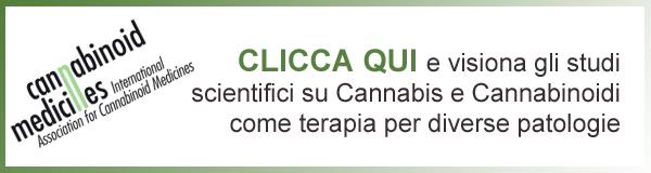 banner studi cannabis