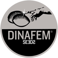 dinafem-logo-web