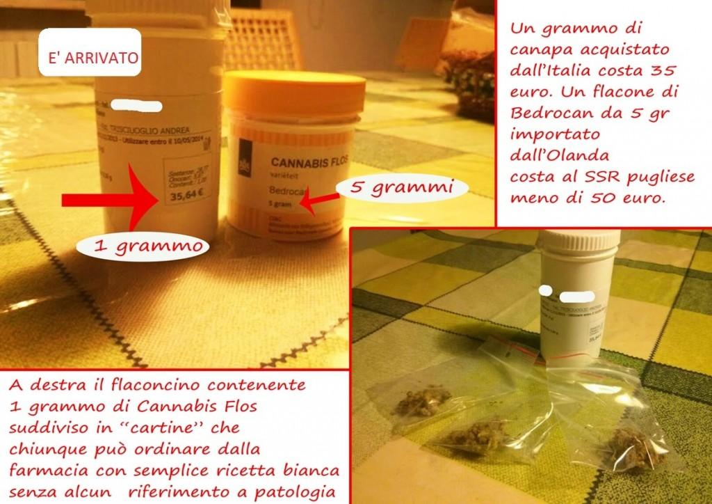 costi 1 grammo cannabis flos 2